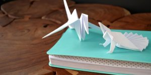 intelligence créative en origami - agence equation